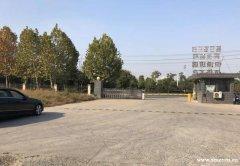 (出租) 个人直租!肥东包公大道新城开发区,空地出租部分硬化