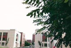 大东标准工业园稀缺50年产权厂房800至1万平出租出售可贷款