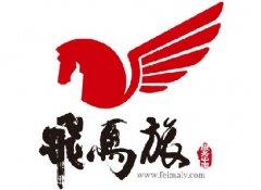 江苏-飞马基金