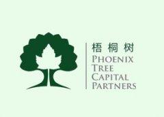 北京:梧桐树资本