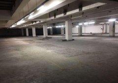(出租) 港澳大道浩业物流园 仓库 2200平米