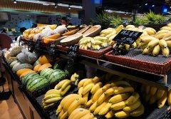 北菜求租适合经营超市的商业