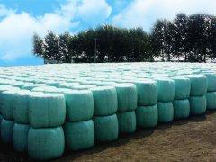 年产20万吨生物秸秆膨化饲料项目